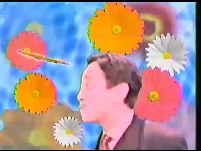 VHSテープ整理シリーズ浅草橋ヤング洋品店 工藤兄弟VS加勢大周 江頭2時50分、春一番、ニセ大周千本ノック ガリガリドラゴンへの道等
